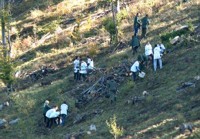 Školarci zasadili oko 800 stabala smrče